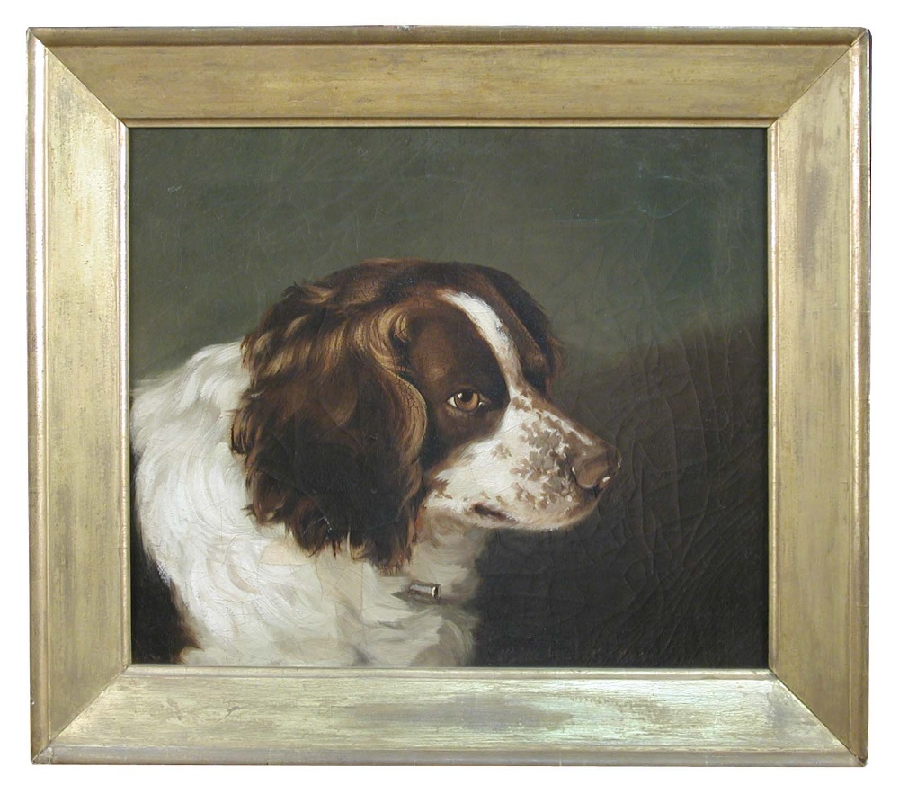 Lot 522 - G W Miller of Bath (British, 19th Century) Study of a liver and white spaniel signed and dated lower