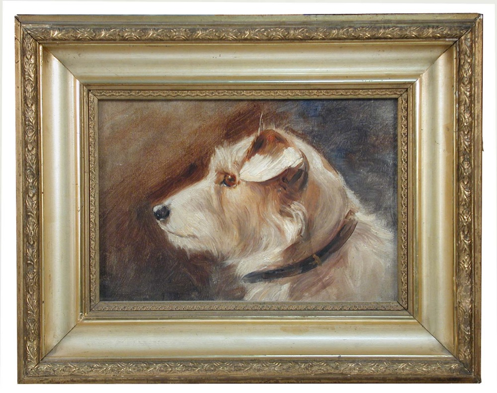 Lot 528 - § Agnes Hilda Coates (British, 1877 - 1957) Study of a white terrier oil on artist's board 16 x 24cm