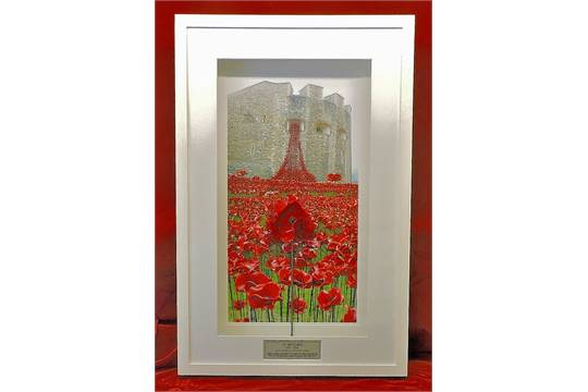 Rbl centenary paul cummins ceramic poppy from tower of london framed against photo of the tower