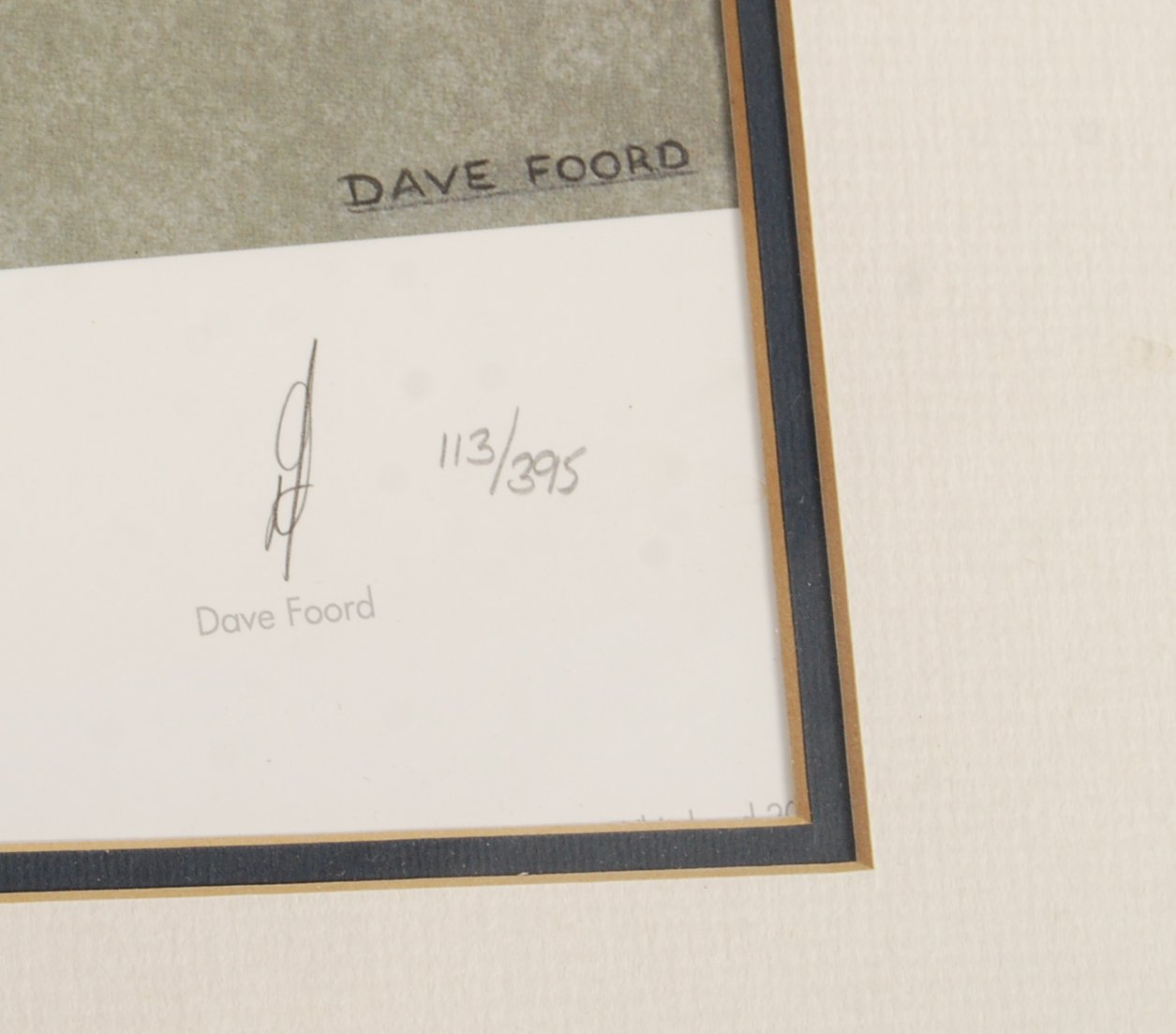 ' THE FUTURE'S BEST ' BY DAVE FORD AUTOGRAPHED NEI - Image 3 of 6
