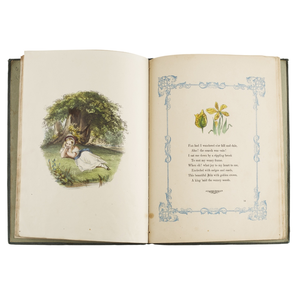 THE WILD FLOWERS OF THE ALPHABETA POEM FOR CHILDREN London: Ackermann and Co., 1858. 4to, hand-