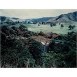 "Thomas Struth. ""Paradise 5, Daintree, Australien"". 1998"