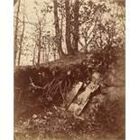 August Kotzsch. Wurzeln über Felsgestein. Um 1870–1880