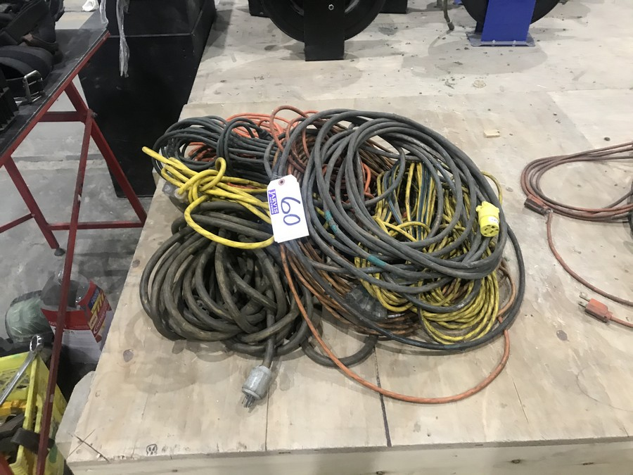 Lot 60 - EXTENSION CORDS
