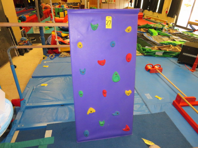 Lot 27 - TODDLER ROCK WALL & SLIDE (NO MATS)
