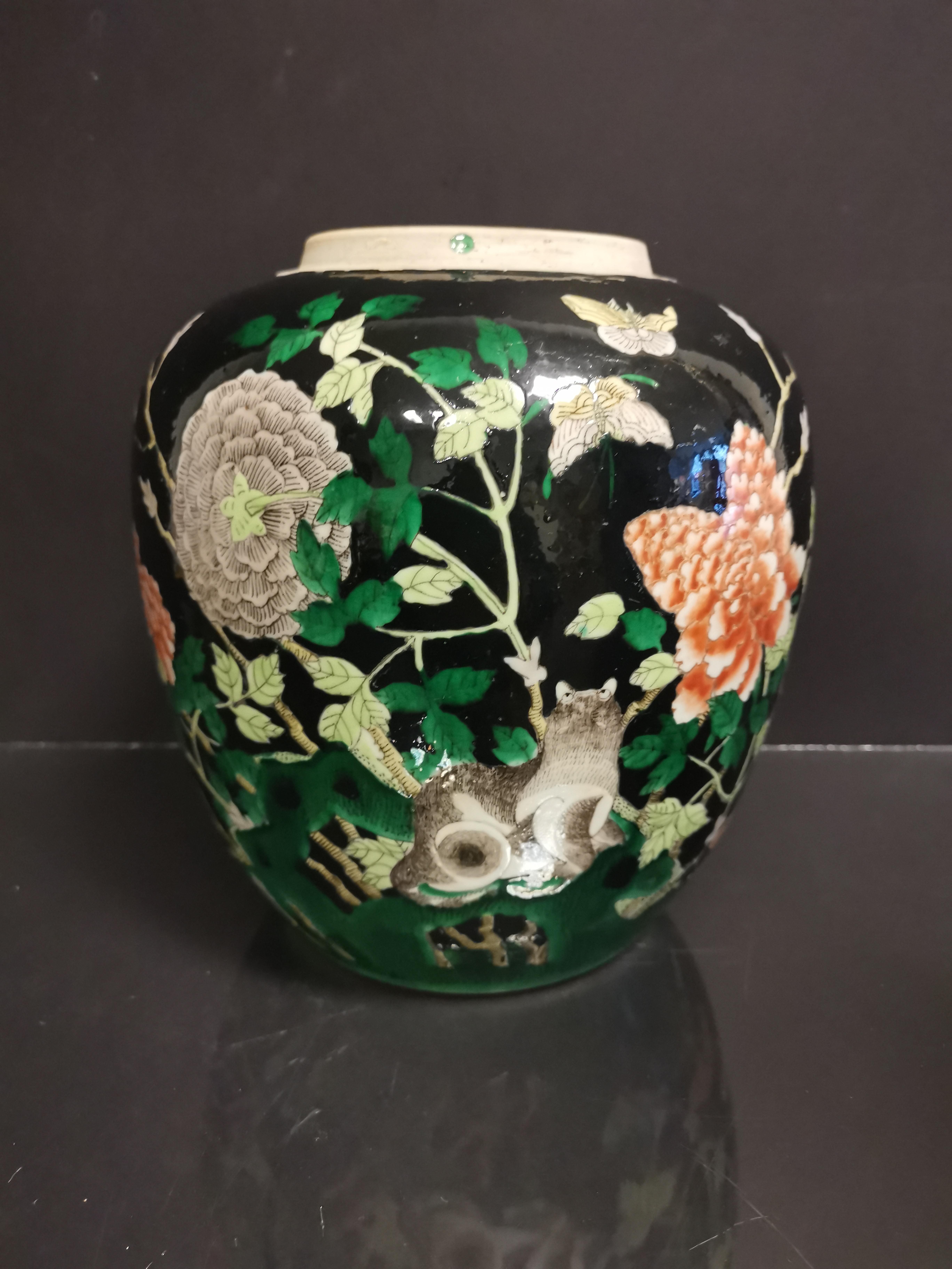 CHINE. Pot en porcelaine à décor de pivoines, animaux, papillons sur fond noir, fin [...]