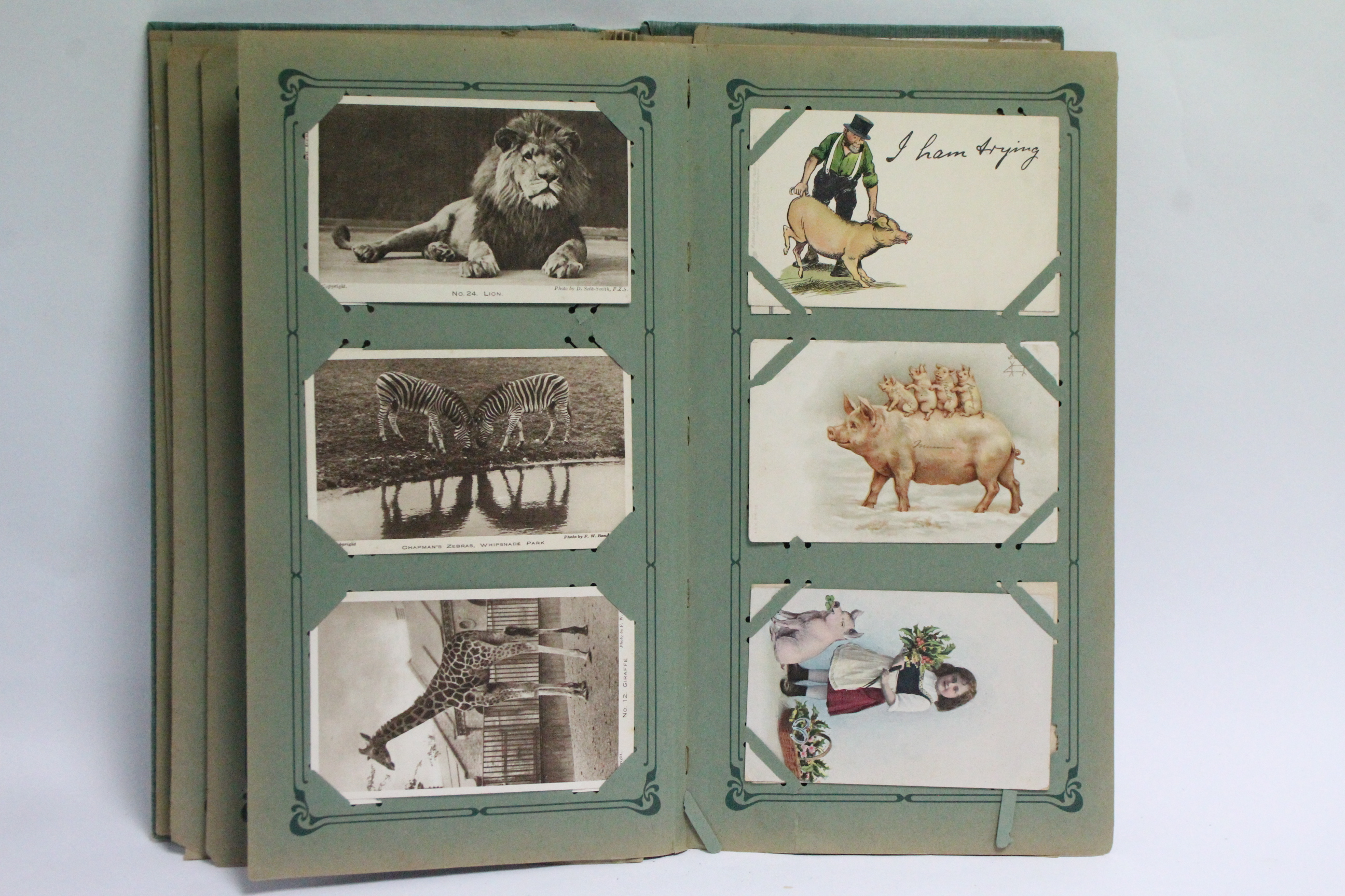 Lot 118 - An album of approximately one hundred & sixty postcards, early-mid 20th century – all animals,
