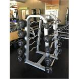 Precor Curling Bars w/ Mounted weights c/o 20,30,40,50,60,70,80,90,100,110 (lbs) w/ Holding Rack