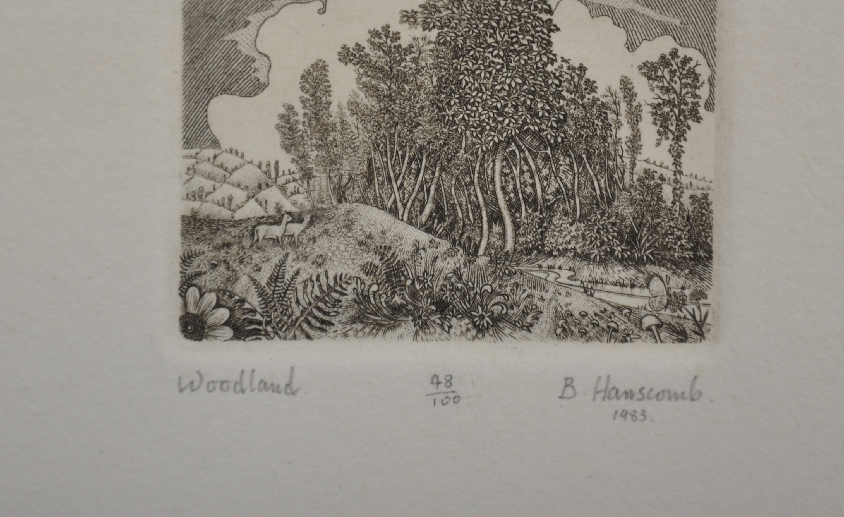 "B... Hanscomb (20th Century) British. ""Woodland"", Etching, Signed, Inscribed, Numbered 48/100, and - Image 3 of 4"