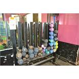 LOT - DUMBELLS WITH RACK