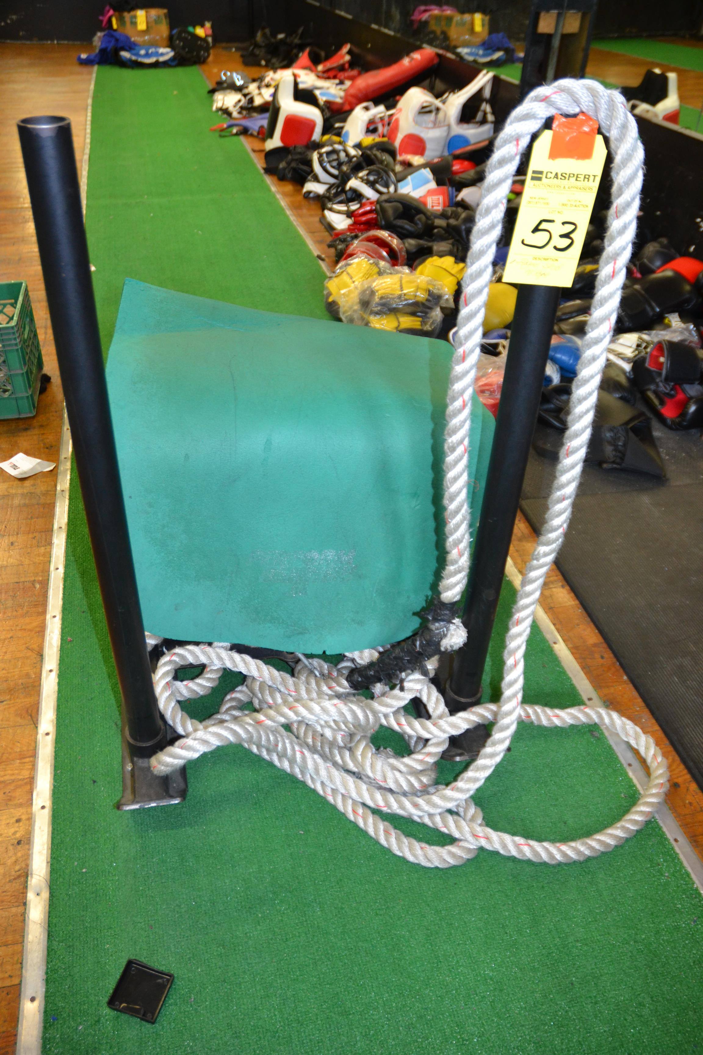 Lot 53 - ROGUE SLED WITH ROPE