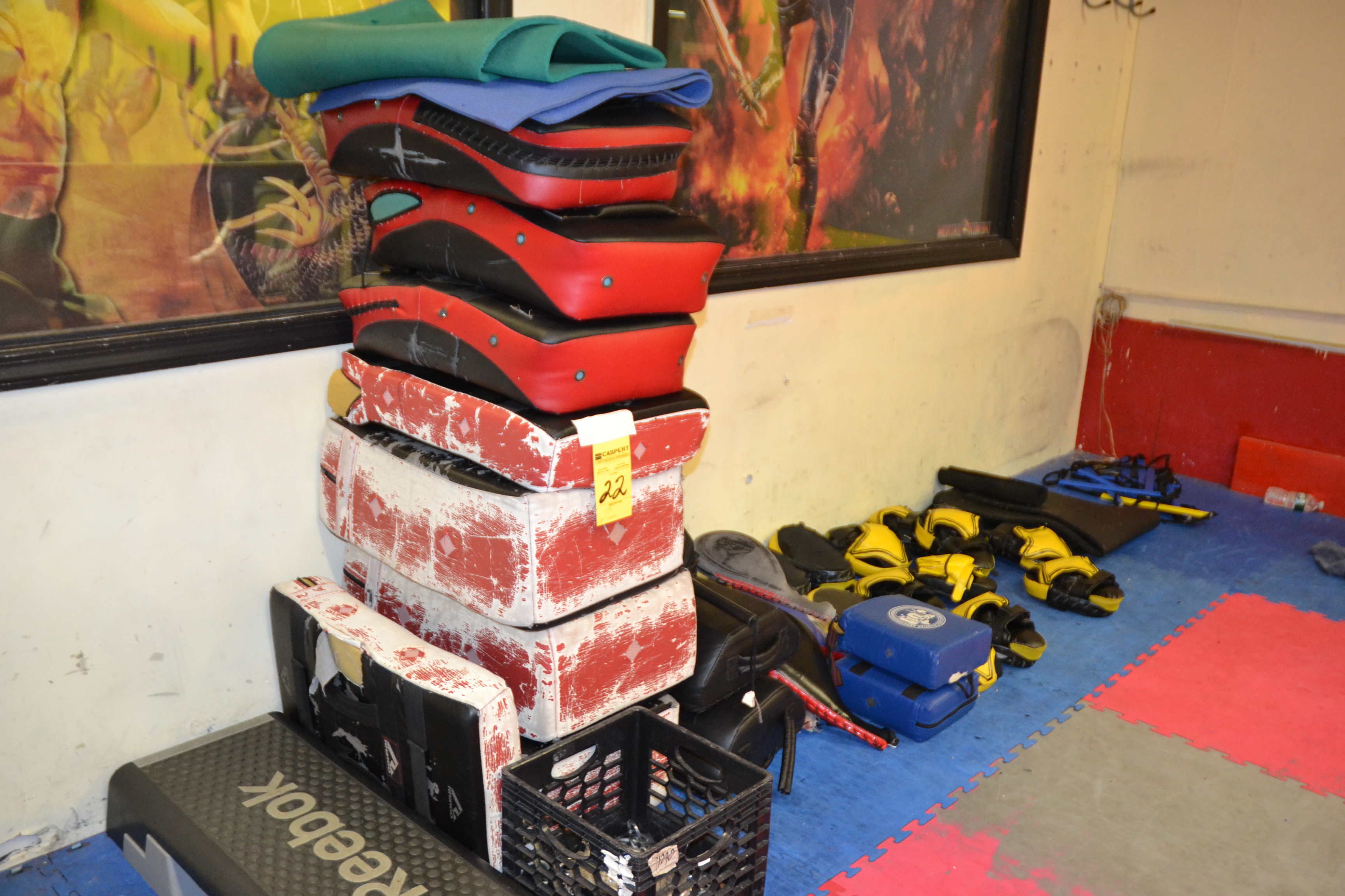 Lot 22 - LOT - GYM ACCESSORIES