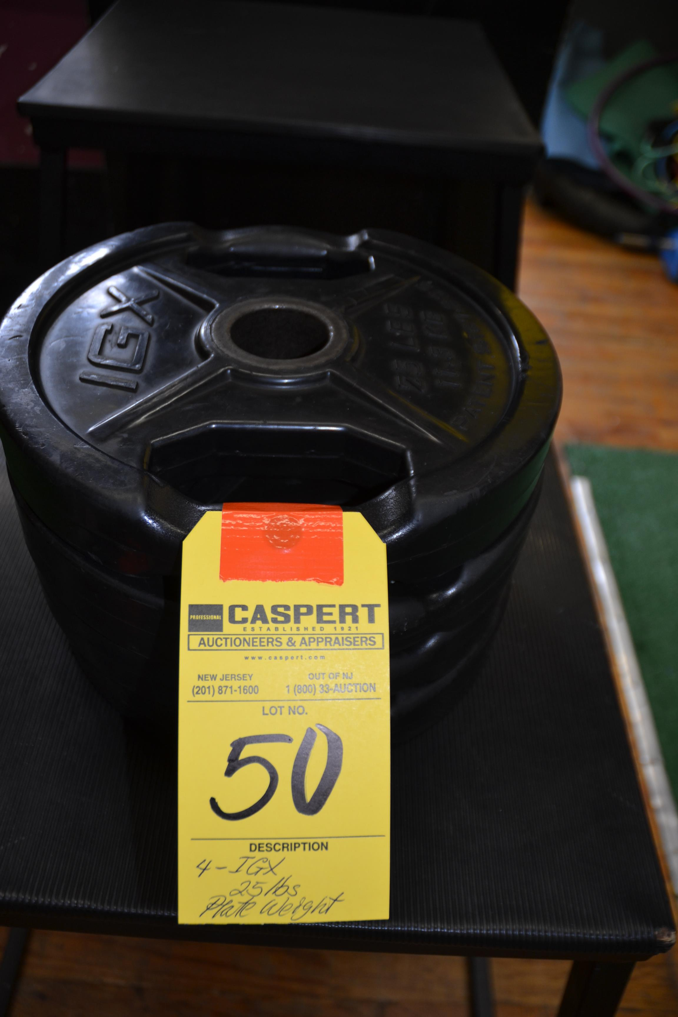 Lot 50 - IGX 25 LB. PLATE WEIGHTS