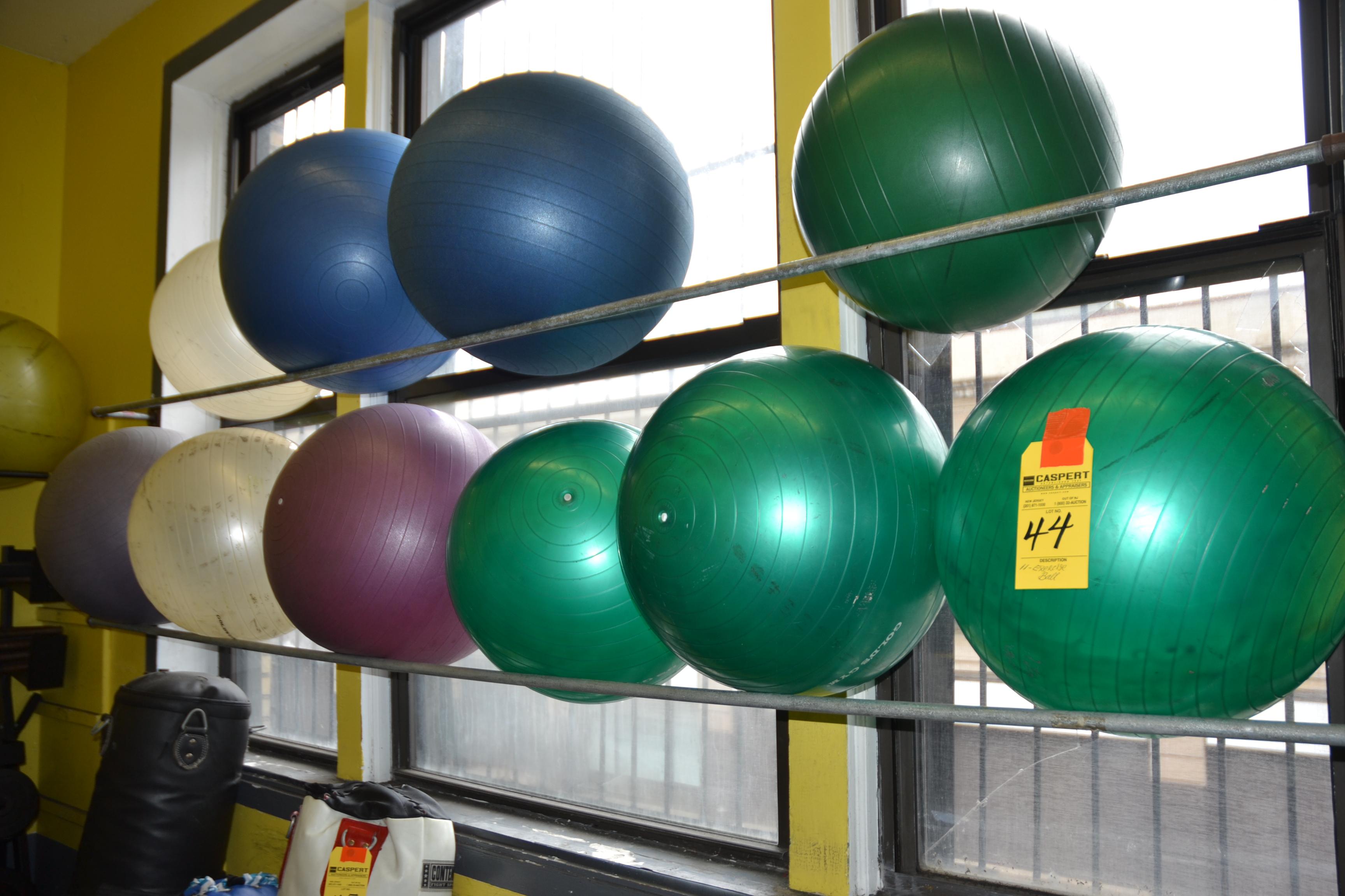 Lot 44 - EXERCISE BALLS