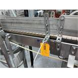 Discharge Conveyor from Labelers
