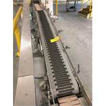 Alliance 9 foot long case conveyor section after packer