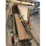 Alliance 6 Foot Long Case Conveyor section with drive and idler