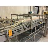 Combiner Conveyor from Dual 3.25 inch to (5) 4.5 inch Tabletop Conveyor