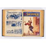 Skipper (1934) 184-214. March to September in bound volume. Good covers, light tan pages with darker