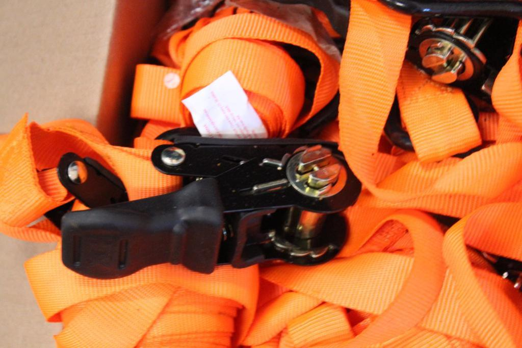 Lot 2 - Light duty ratchet straps