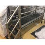 Stainless Steel Rolling Platform