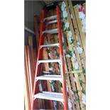 WERNER ORANGE 10 FT. LADDER