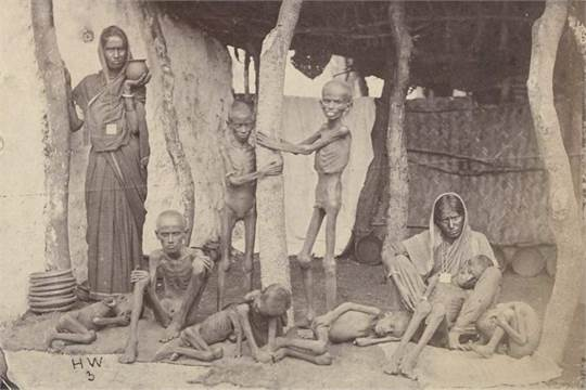 Image result for indian famine 1876