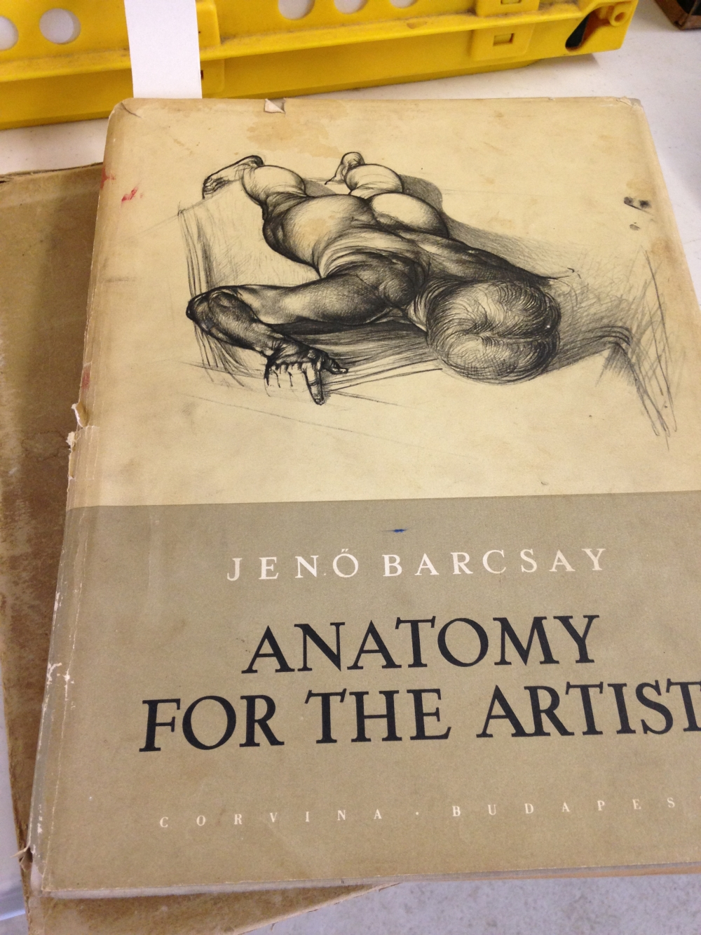 Anatomy for the Artist\' by Jeno Barcsay. Published in 1956 by ...