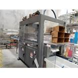 2010 Pearson pick and place case packer