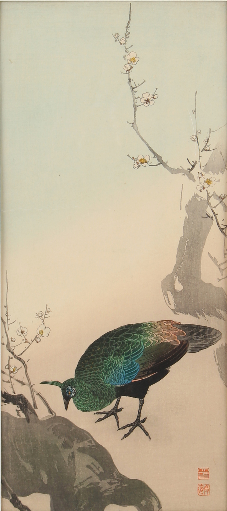 A collection of Japanese woodblock prints - Peacock & Prunus (early 20th century) - mounted but