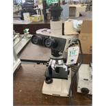 Olympus #62739 Optical Microscope w/Specialty Optical Light Source #FLI-150 & (5) Optics c/o: MD