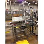 SS Crossover conveyor 3 steps. Located in Marion, Ohio Rigging Fee: $100
