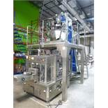 CAM Packaging Systems rotary pre-made pouch/bag vertical packaging system, including: (1) CAM