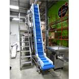 S/S incline infeed belt conveyor/elevator (SUBJECT TO CONFIRMATION)