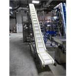 S/S incline infeed belt conveyor/elevator