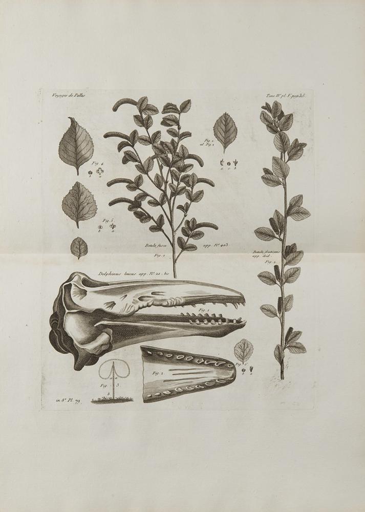 PETER SIMON PALLAS (1741-1811): VOYAGES DU PROFESSEUR PALLAS, DANS PLUSIEURS PROVINCES DE L'EMPIRE - Image 2 of 5