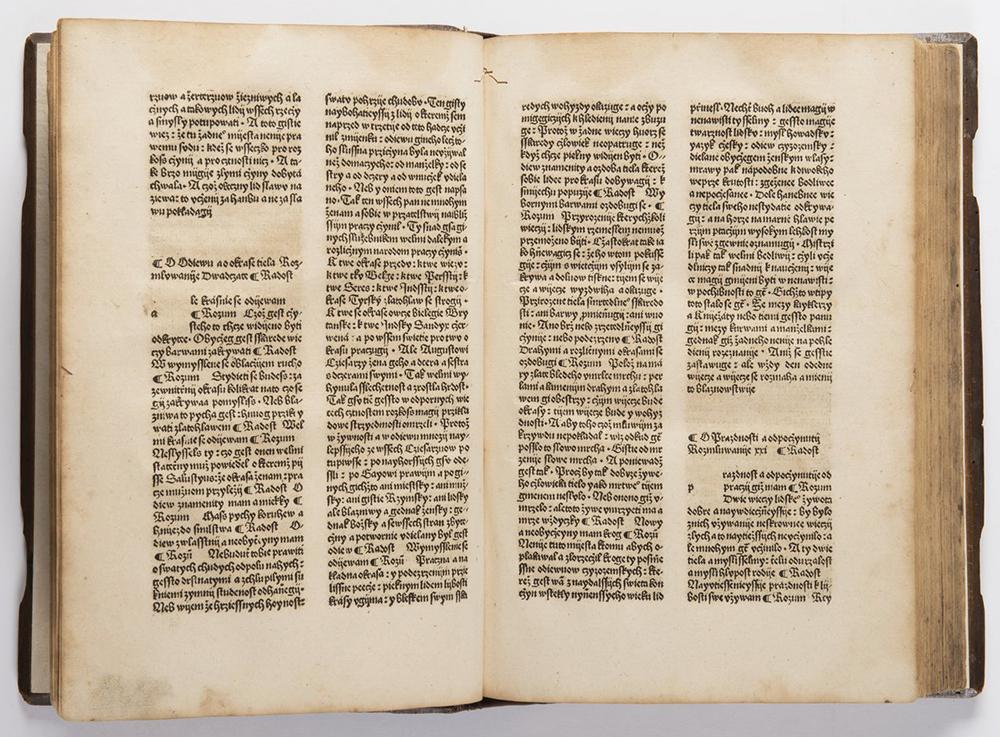 FRANCESCO PETRARCA (1304-1374): DE REMEDIIS UTRIUSQUE FORTUNAE 1501; Bohemia, Prague 32x22x5 cm - Image 3 of 3