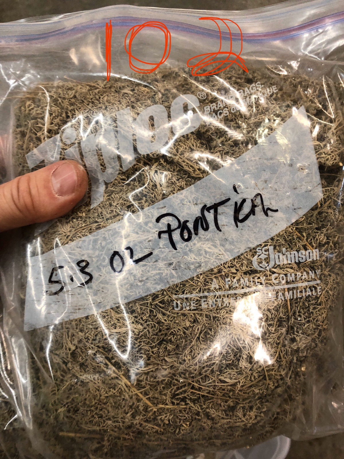 Lot of Herbs and Botanicals: Ponitica, Wormwood Herb C/S (Weight to be Provided | Rig Fee: $20 or HC - Image 8 of 14