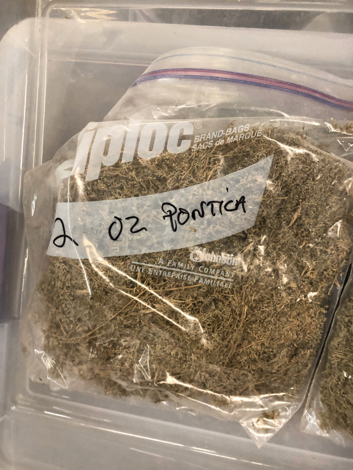 Lot of Herbs and Botanicals: Ponitica, Wormwood Herb C/S (Weight to be Provided | Rig Fee: $20 or HC - Image 3 of 14