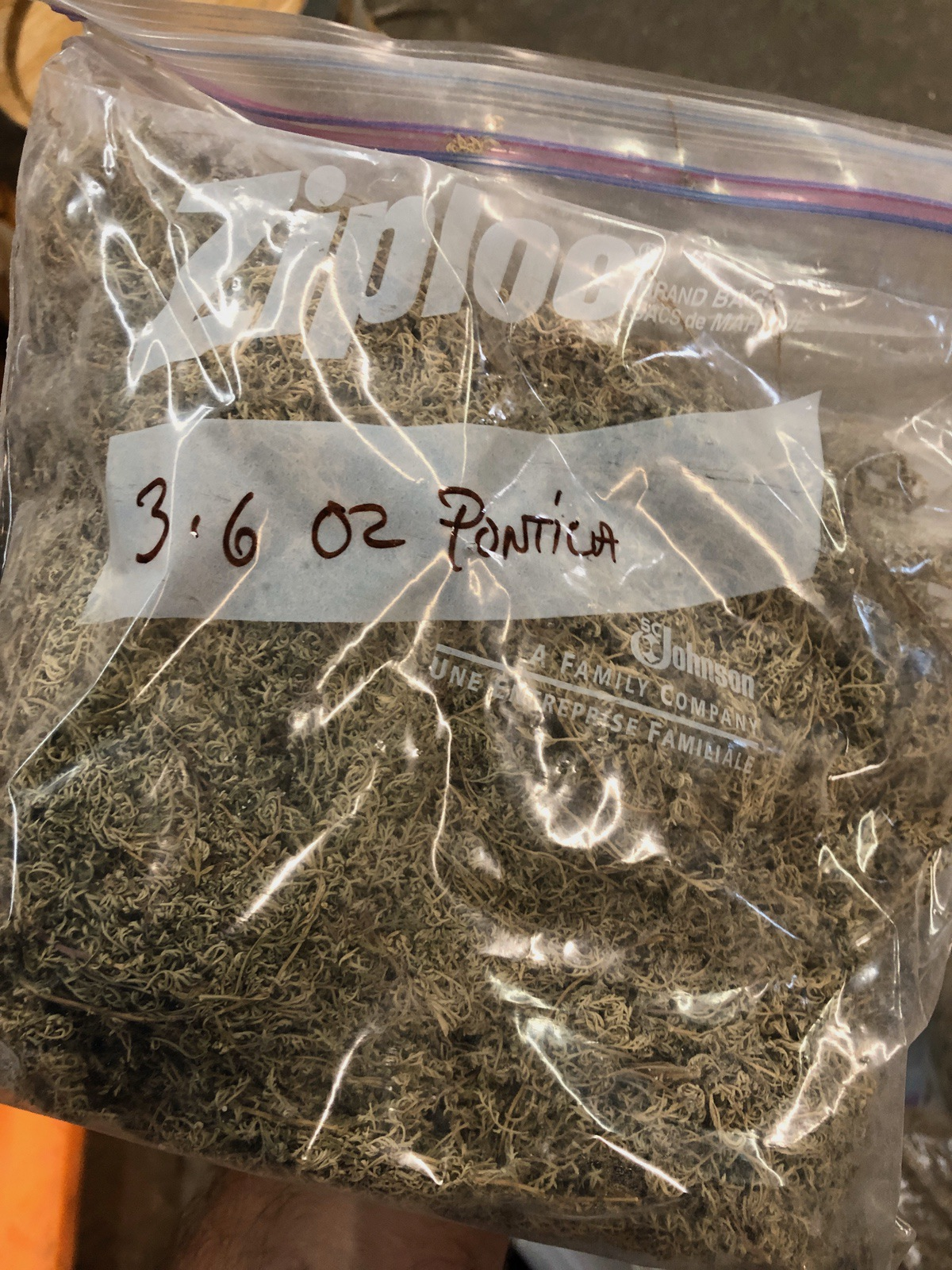 Lot of Herbs and Botanicals: Ponitica, Wormwood Herb C/S (Weight to be Provided | Rig Fee: $20 or HC - Image 4 of 14