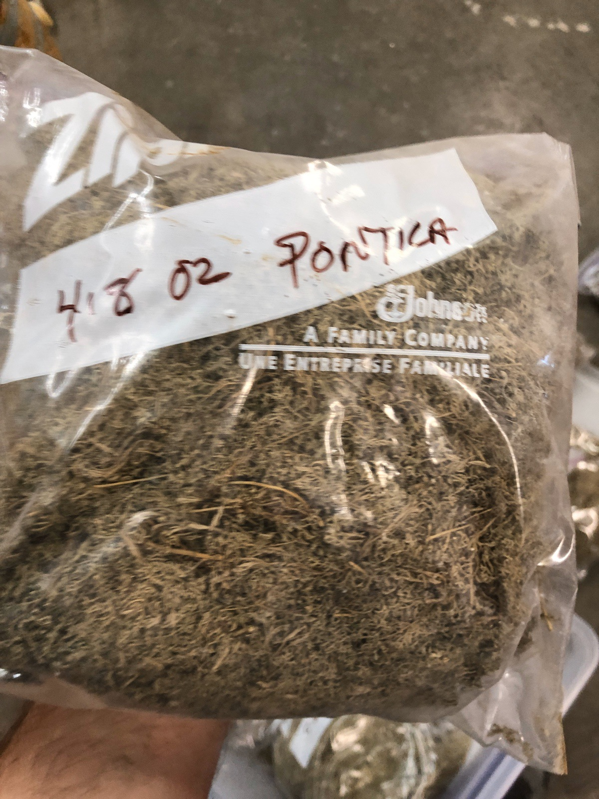Lot of Herbs and Botanicals: Ponitica, Wormwood Herb C/S (Weight to be Provided | Rig Fee: $20 or HC - Image 11 of 14