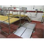 Sort table #1 4 ft w x 5 ft l x 1 ft h, with 8 in w discharge chute fitted with magnetic separator