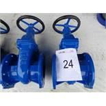 2 x BS5163 type B DN125 PN16 gate valves