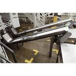 SS Incline rubber belt conveyor, cleated, 96 in. long x 12 in. wide, 48 in. discharge. **Rigging Fee