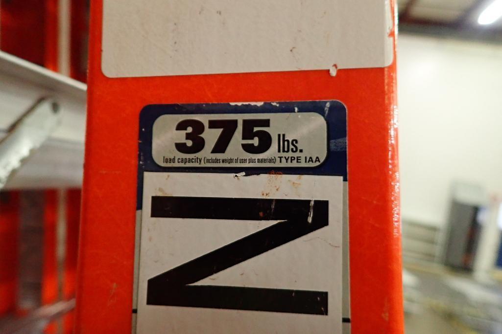 Lot 17 - Werner 10 ft. step ladder. **Rigging Fee: $10**