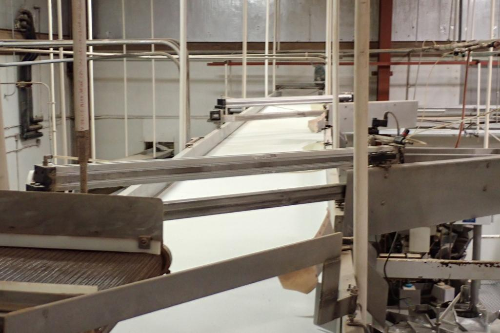 Lot 71 - Rail-Conveyor SS belt conveyor, 50 ft. long x 30 in. wide, pneumatic product diverters, SS frame, su