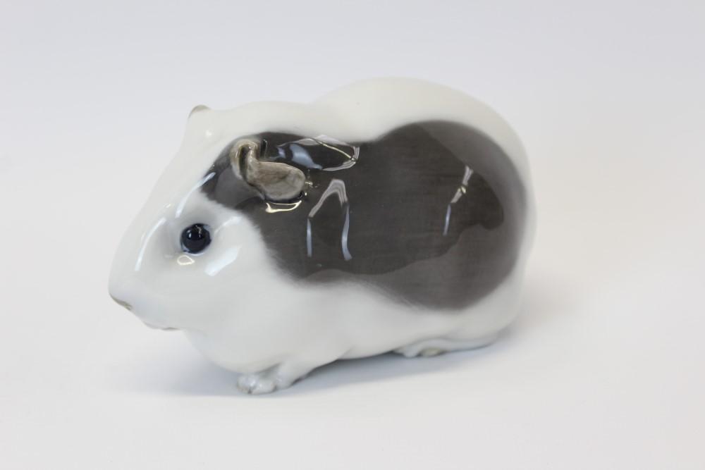 Lot 2041 - Royal Copenhagen porcelain model of a guinea-pig,