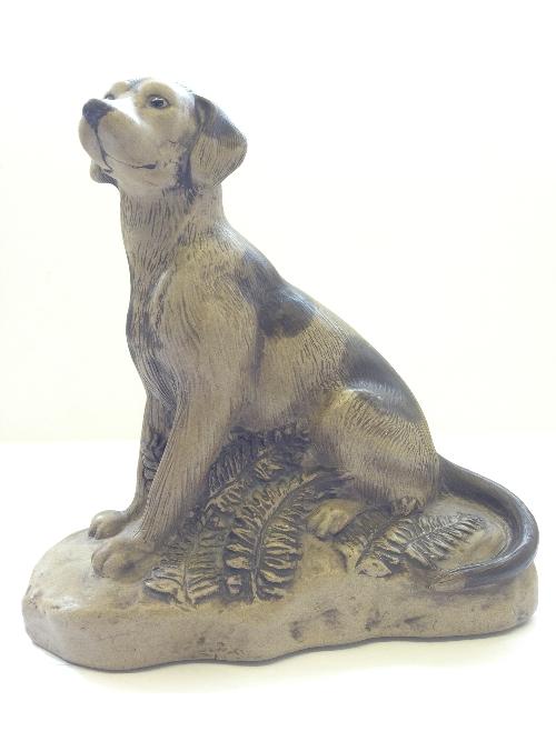 Poole Dog