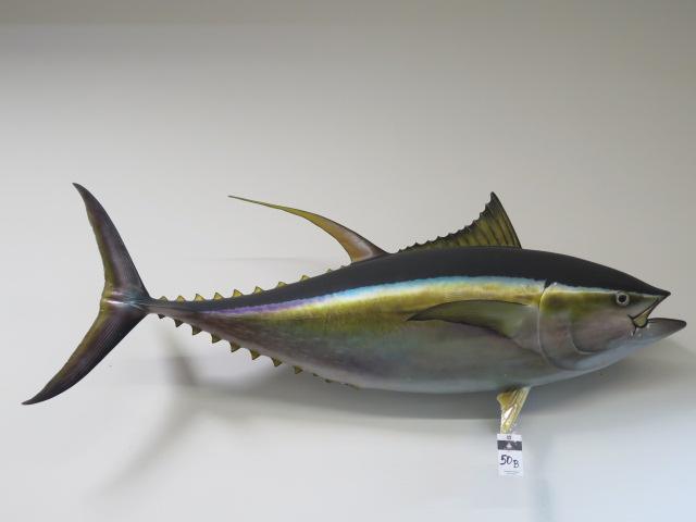 Stuffed Tuna