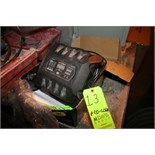 New PRO-LOGIX Battery Charger, Model PL2510 with 120 VAC 60 HZ Input and 12 VDC, 20 A, 6 VDC, 20 A